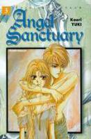 Rayon : Manga (Shojo), S�rie : Angel Sanctuary T3, Angel Sanctuary