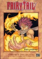 Rayon : Manga (Shonen), Série : Fairy Tail T19, Coffret Collector Tome 19+Magazine Sorcerer