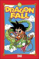Rayon : Manga (Shonen), Série : Dragon Fall T1, Le Commencement