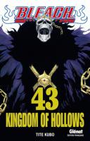 Rayon : Manga (Shonen), Série : Bleach T43, Kingdom of Hollows