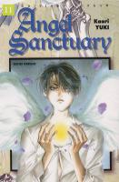 Rayon : Manga (Shojo), S�rie : Angel Sanctuary T11, Angel Sanctuary