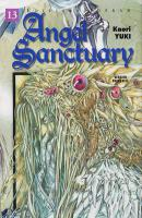 Rayon : Manga (Shojo), S�rie : Angel Sanctuary T13, Angel Sanctuary