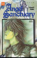 Rayon : Manga (Shojo), S�rie : Angel Sanctuary T14, Angel Sanctuary