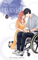 Rayon : Manga (Josei), Série : Perfect World T11, Perfect World
