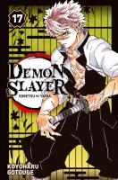 Rayon : Manga (Shonen), Série : Demon Slayer T17, Demon Slayer